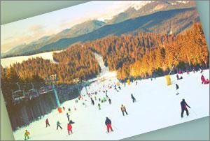 Teléfono Gratuito Estación de Esquí Cerler