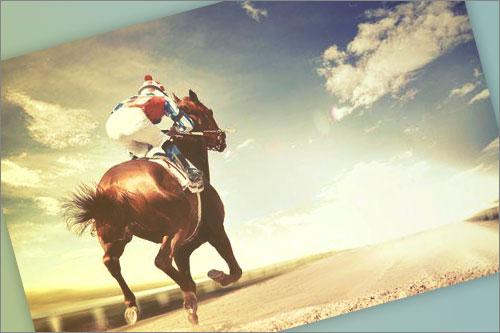 Teléfono Gratuito Madrid Horse Week