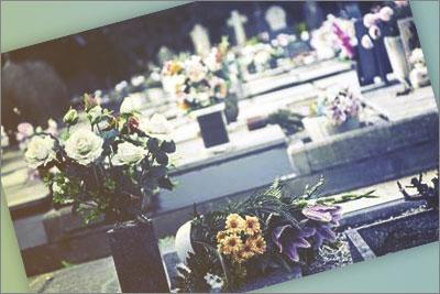telefono gratuito cementerio torrero