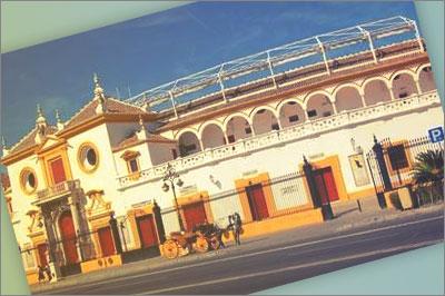 telefono gratuito plaza toros monumental pamplona