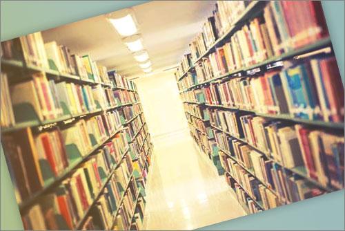 Telefono Gratuito Biblioteca Pedro Salinas
