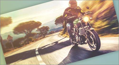 Telefono Gratuito Harley Davidson