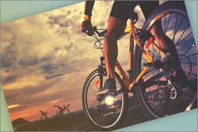 telefono gratuito bh bicicletas