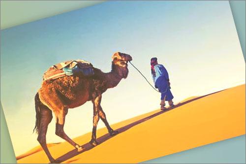 Telefono Gratuito Casa arabe