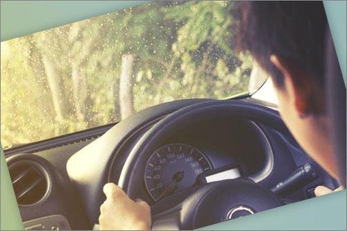 telefono gratuito autos montalt